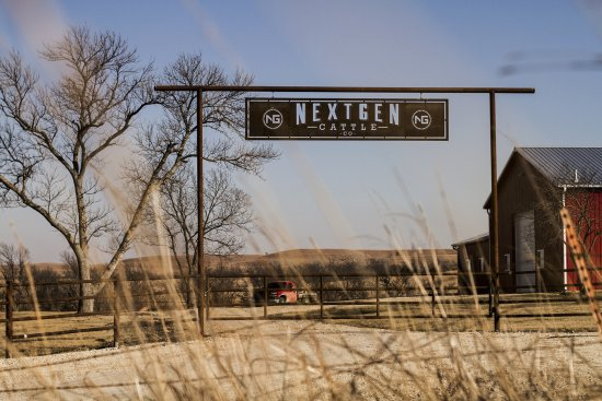 Maple Hill, KS: Much of our beef comes from our cattle company in the flint hills, Nextgen Cattle Co.