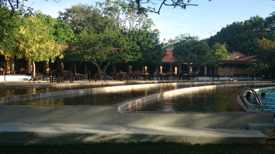 Habarana Village by Cinnamon: Lovely wading pool for the kids