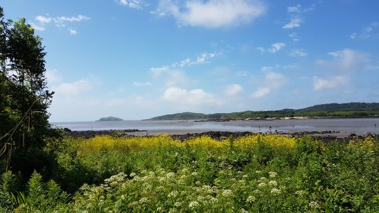 Kippford, UK: 20170618_111959_large.jpg