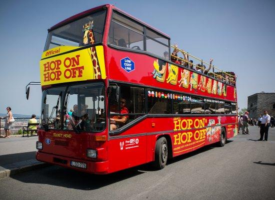 Giraffe Hop On Hop Off City Tour
