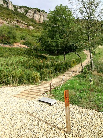 Solutre-Pouilly, Frankrijk: Le parc archéologique et botanique, lieu historique des fouilles