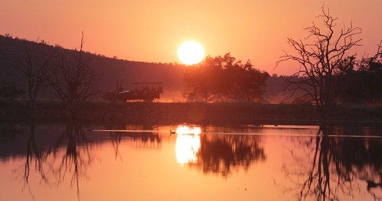 Sunrise game drive in the Madikwe Game Reserve