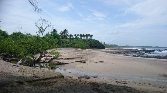Playa Junquillal, Κόστα Ρίκα: DSC_1237_large.jpg