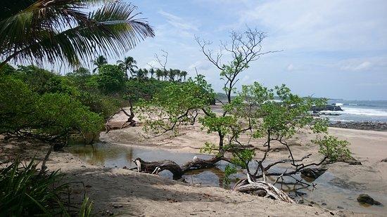 Playa Junquillal, Κόστα Ρίκα: DSC_1235_large.jpg