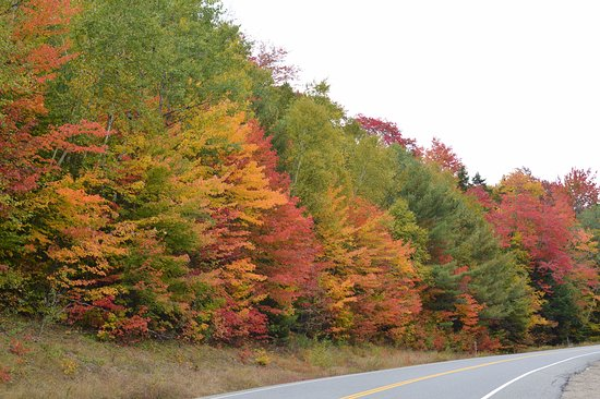 Beautiful Fall Colours along the Kancamagus Highway