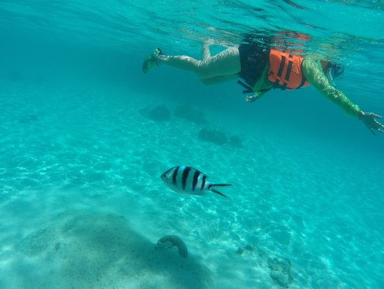 Koh Tao & Koh Nang Yuan Snorkeling Tour - B-PROJECT: Beautiful ocean. Good for snorkelling beginner, very safety. But price is high (BTH $2200). Long