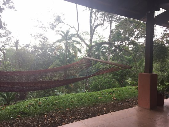 Finca Luna Nueva Lodge: The view from the rocking chairs on our porch... this is the life!