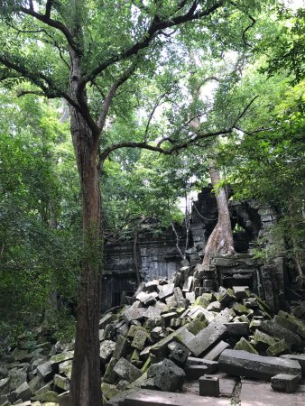 シェムリアップ州, カンボジア, photo2.jpg