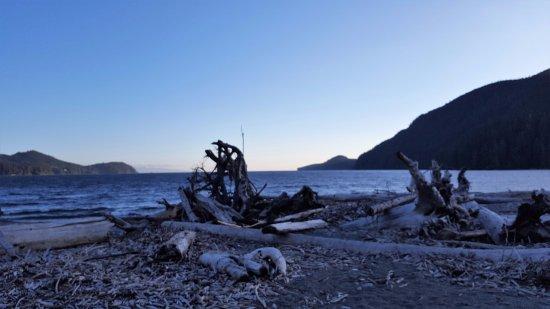 Port Renfrew, Canadá: Dusk at Pacheedaht Beach 1