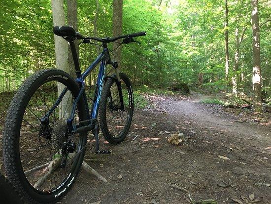Chesterfield, VA: Fantastic bike trails for all skill levels