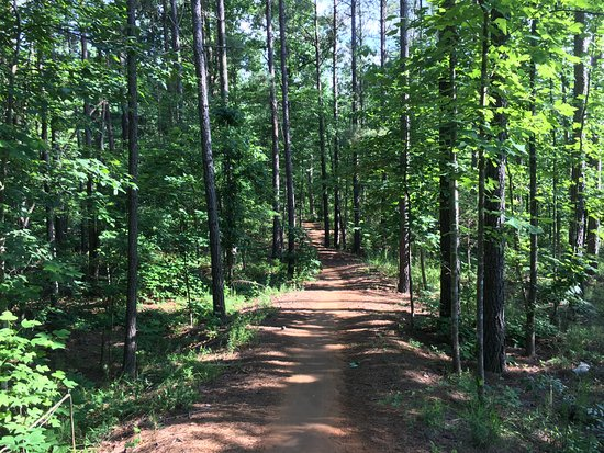 Chesterfield, Wirginia: Well planned and maintained trail system