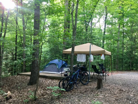 Chesterfield, Wirginia: Spacious and well shaded campsites