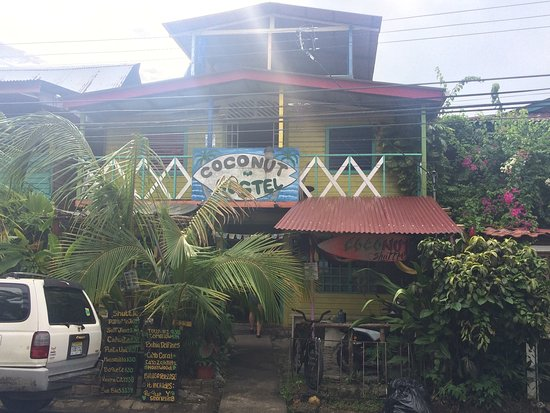 Coconut Hostel: photo0.jpg