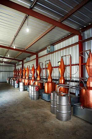 Dripping Springs, TX: The distillery currently is home to 15 copper pot stills that make al of our vodkas & gins