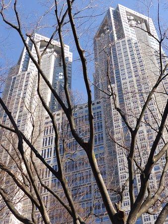 Tokyo Metropolitan Government Buildings : Tokyo, Giappone