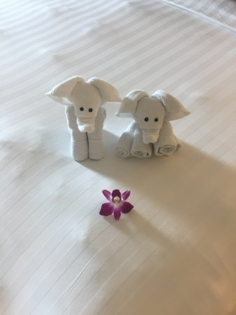 The KEE Resort & Spa : towel art