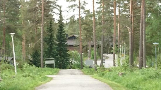 Polvijarvi, Finland: DSC_0214_large.jpg