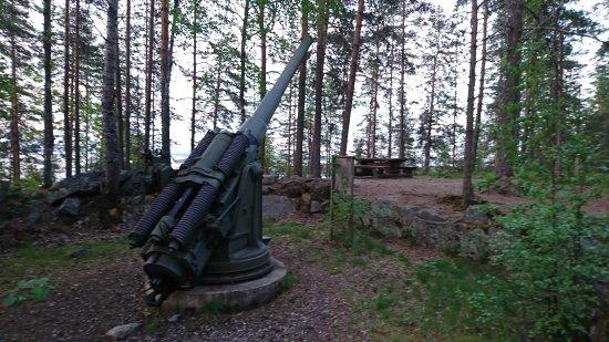 Polvijarvi, Finland: DSC_0212_large.jpg