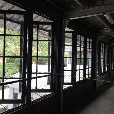 Macwood Tea Factory: photo8.jpg