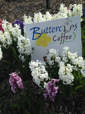Egg Harbor, WI: Great coffee in every Season!