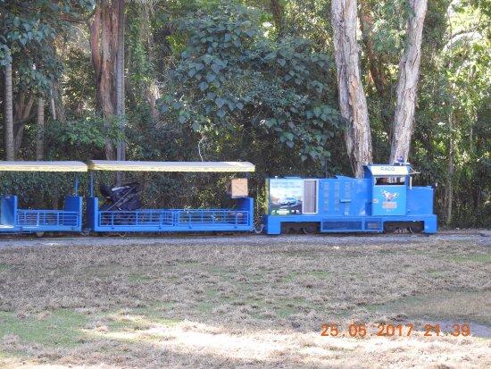 Currumbin, Australia: Mini Train inside the sanctuary