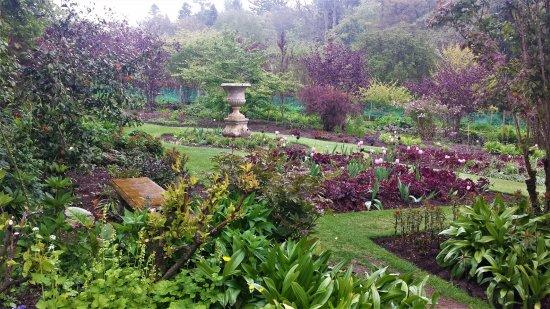 Banchory, UK: Stunning Gardens