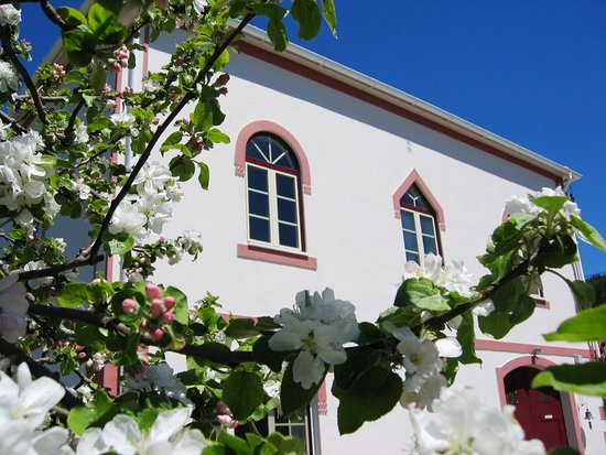 Portalegre, Portugal: Quinta da Vila Maria and Spring apple blossom.