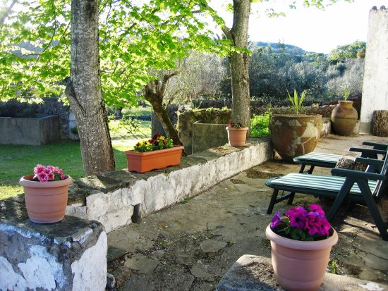 Portalegre, Portugal: Relax in the shade of the linden trees.