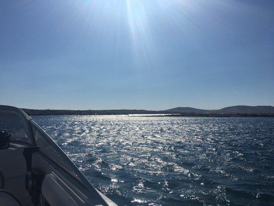 Ornos, Kreikka: Veronis Marine