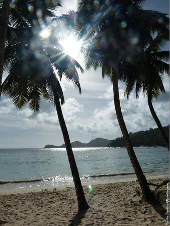 Остров Маэ, Сейшельские острова: P1150113_large.jpg