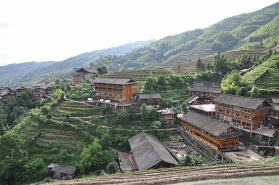 Wendy Wei Tours: rice terraces