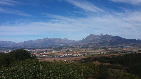 Paarl, Sør-Afrika: Views from the coffee shop