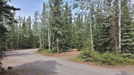 Tok, Аляска: 20170619_130211_Richtone(HDR)_large.jpg