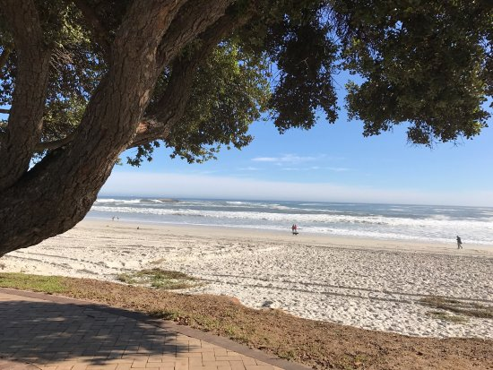Camps Bay, South Africa: photo2.jpg
