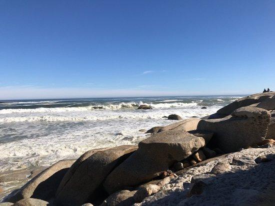 Camps Bay, Republika Południowej Afryki: photo8.jpg
