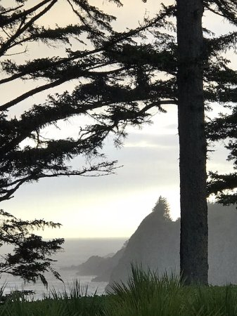 Ocean House Bed and Breakfast: View of Yaquina Head from the Property