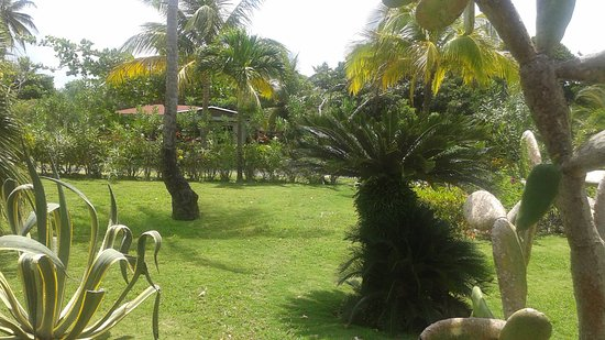 Calibishie, Dominica: SEA CLIFF COTTAGE GROUNDS
