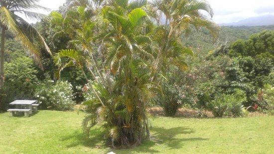 กาลิบิไช, โดมินิกา: COTTAGE GROUNDS