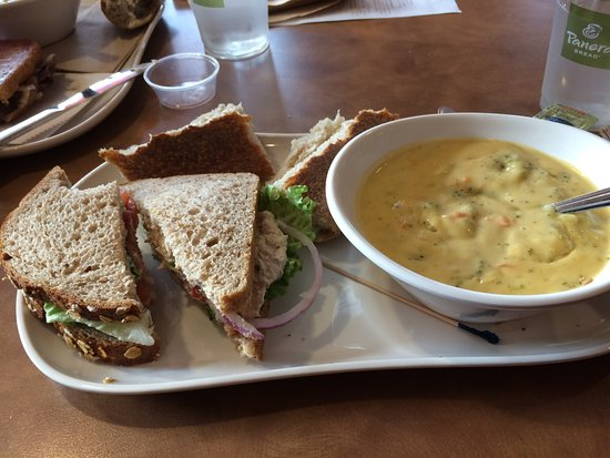 ‪‪New Albany‬, ‪Ohio‬: Tuna sandwich and broccoli cheddar soup‬
