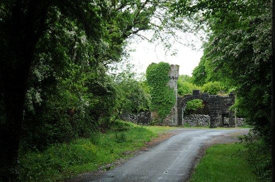 Menlo Castle / Blake's Castle: worth a picture