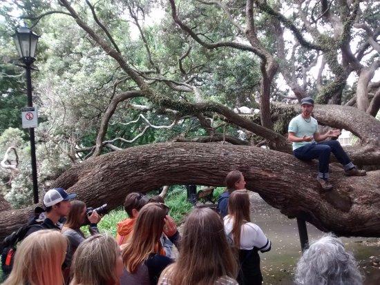 Auckland Free Walking Tours: Greig, nuestro guía en acción