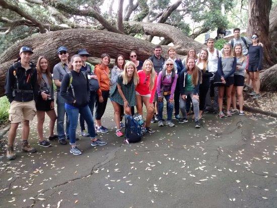 Auckland Free Walking Tours: Un alto en Albert Park