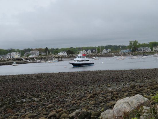 Rye, NH: Harbor at low tide, seen from the park.
