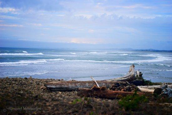 Lanai at the Cove Photo