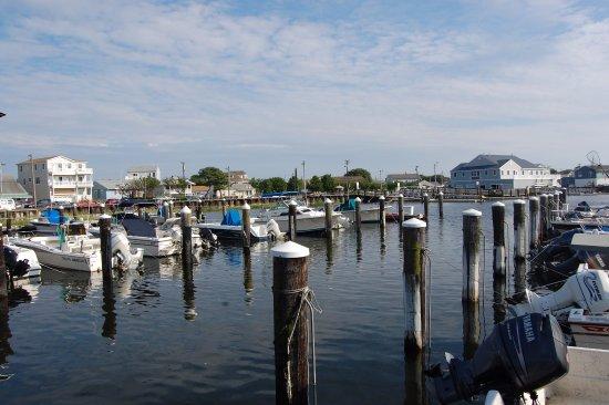 Brigantine, NJ: В бухте очень красивый закат и ловятся крабы, но можно поймать и черепаху.