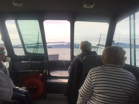 Harv and Marv's Outback Alaska: Looking out the front,