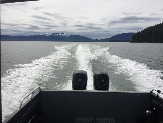 Harv and Marv's Outback Alaska: Looking out the back