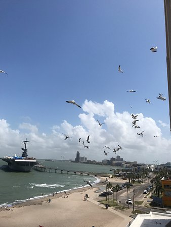 Radisson Hotel Corpus Christi Beach: photo2.jpg