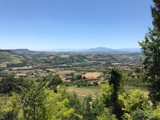 Le Corti Dei Farfensi -wine shop