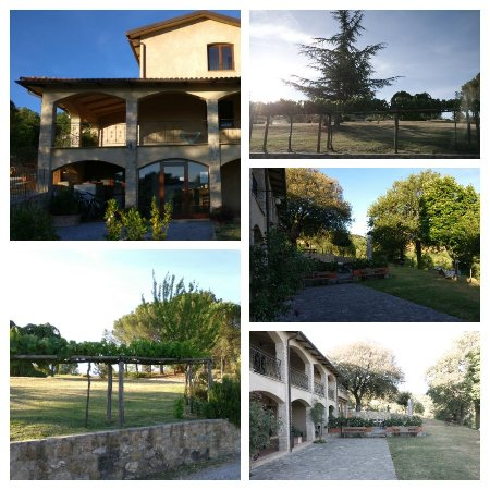 Vitabella Toscana: 2017-06-12_07_large.jpg